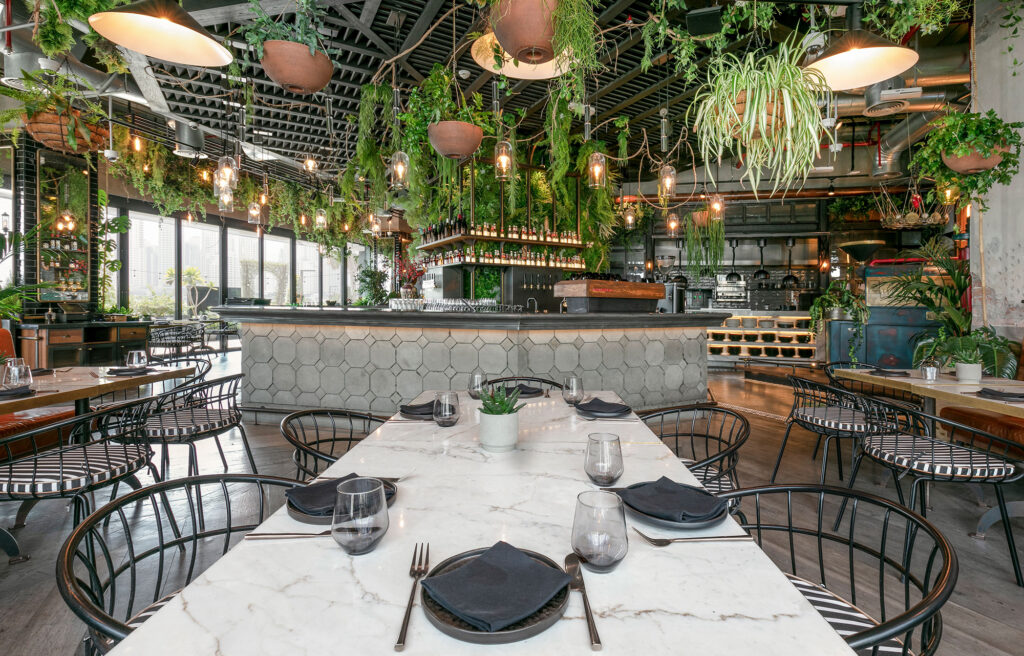 Christmas Day Brunch Offers in Dubai