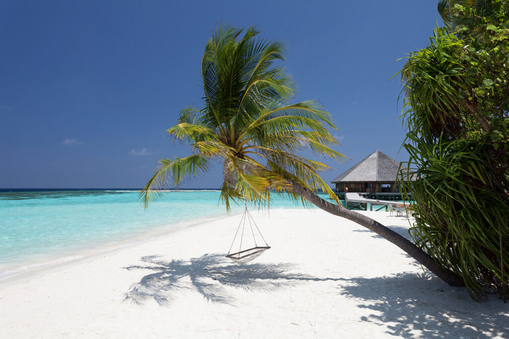 Vilamendhoo Maldives Resort & Spa in the Maldives